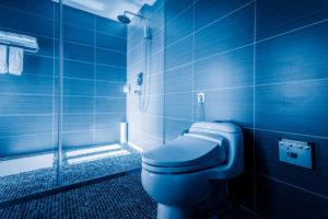 fin blå toalett